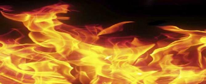 FFW-Flammen-banner